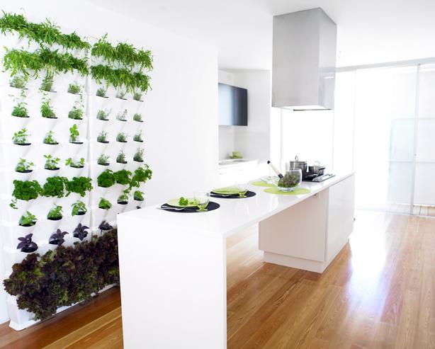 orto da cucina verticale